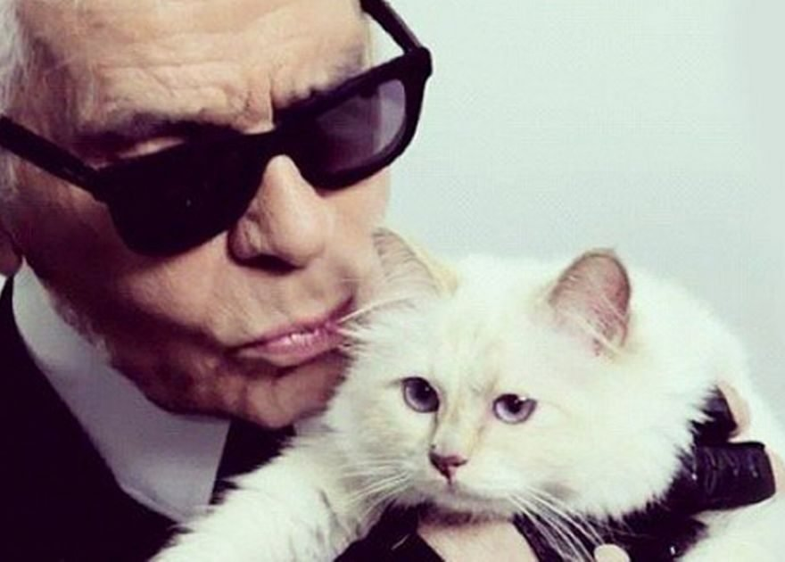 Karl Lagerfelds Beloved Cat Choupette Orphaned After Pampered Life